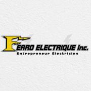 Ferro Electrique