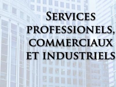 Services professionels, commerciaux et industriels